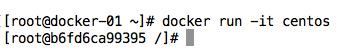 docker-run