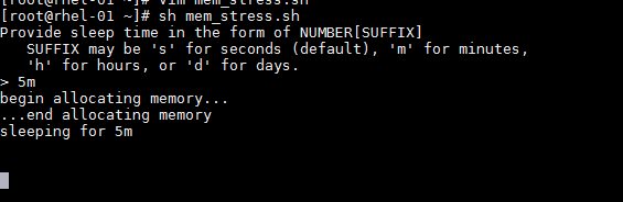 script_memoryStress